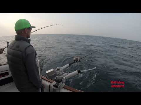 Charter Fishing On Lake Michigan With Big Bird Charter