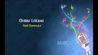 Ovidiu Liteanu - Pasii Domnului