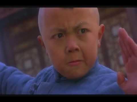Jet Li, a Kid and a Granny kicking ass