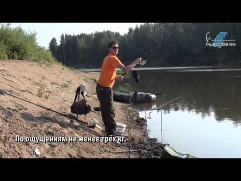 ловля сомов в нижегородской области