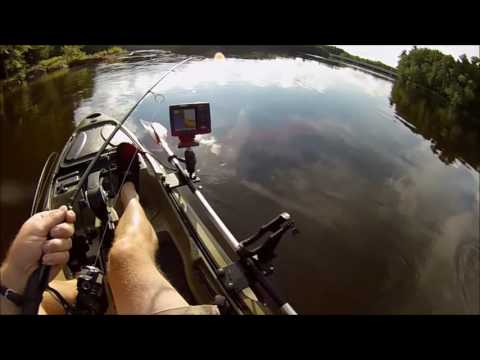 Kicking Bass on the Wisconsin River July 2016,  Smallmouth bass fishing from Kayak