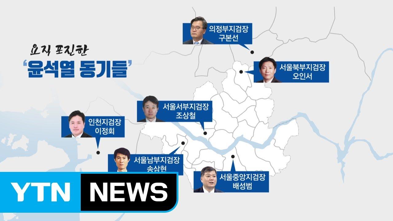 '윤석열 동기들' 요직 포진...집단 지도체제 속 '윤석열 사단' 약진 / YTN