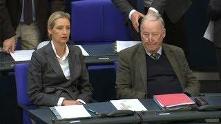 KLATSCHE FÜR AFD: Klage gegen Merkels Flüchtlingspolitik gescheitert