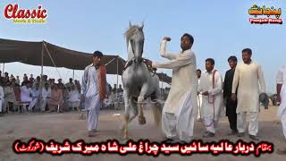 83/Best Horse Dance Punjab Meerik Sial Jhang 2018/ Bani Syed Qalandar Sultan