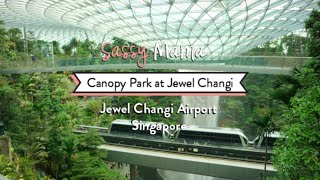 Canopy Park at Jewel Changi Airport: Playgrounds, Bouncy Nets, Slides & Mazes