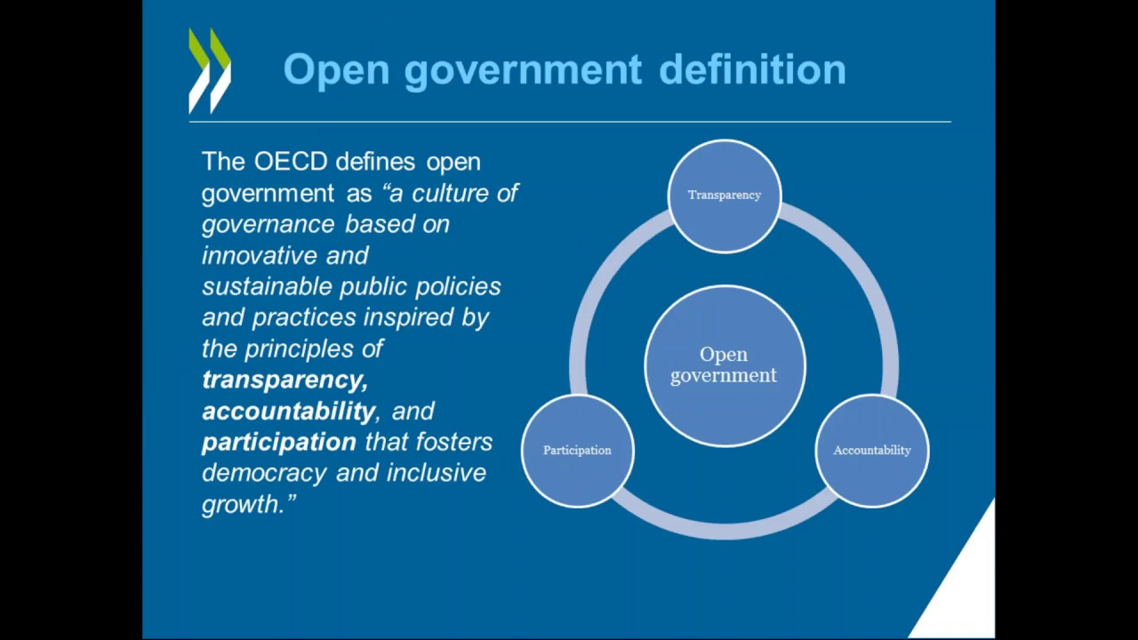 Webinar Open Government And The Sustainable Development border=