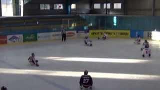 HC Sparta Praha sledge hokej  vs SHK Mustangové Pardubice