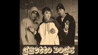 Ghetto dogs чайки...