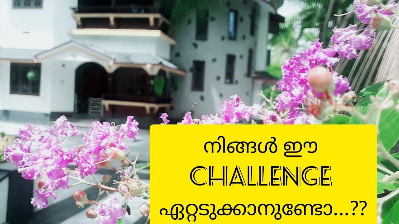 🌱 ചുറ്റുമുള്ള ഇവരെ അറിയാം 🌳Afis notebook challenge video // Bottle Wottle // Malayalam