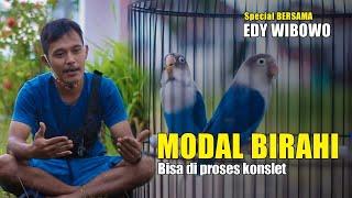 Download lagu MODAL LOVEBIRD BIRAHI BISA DI PROSES KONSLET - BERSAMA EDY WIBOWO WONOSOBO