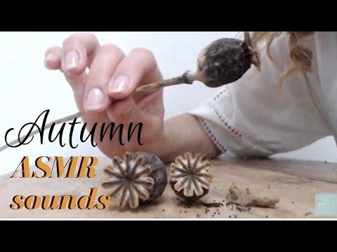 asmr-crinkles-&-whispers-~-autumn-garden-sounds