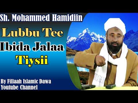 Lubuu Tee Ibida Jalaa Tiysii ~ Sheikh Mohammad Hamidiin (Afaan Oromo) thumbnail