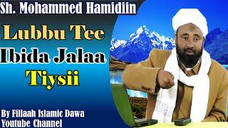 Lubuu Tee Ibida Jalaa Tiysii ~ Sheikh Mohammad Hamidiin (Afaan Oromo)