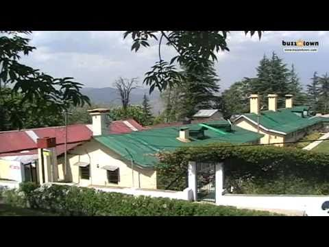 Chail Palace and much more - a montage