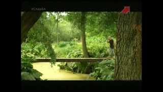 Водные сады Энтони Пола(, 2013-06-14T12:07:51.000Z)