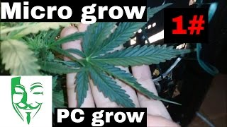 Growing weed in a small place is definetly possible. You only need ...