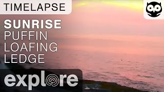 Sunrise At the Puffin Loafing Ledge - Live Cam Time Lapse thumbnail