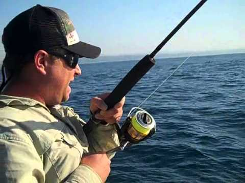 Extreme Game Fishing with CAST//Penn Conquer 7000 & Wes Peens Vid 2.wmv