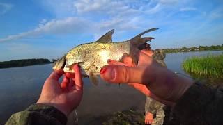 Рыбалка.РОЗЫГРЫШ.Рыбалка на фидер.Подводная охота.Ловля леща осенью.Рыбалка с ночевкой.