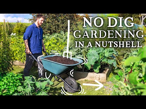NO DIG Gardening Explained in 6 Minutes