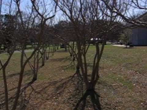 Echos From The Past Getzendaner Park, Waxahachie, Texas