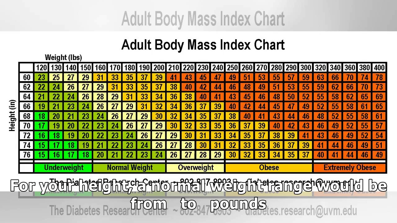 Adult body mass index or bmi youtube adult body mass index or bmi nvjuhfo Gallery
