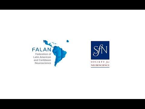 4. FALAN Courses in Ibro 2015: Cortical circuits - Alejandro Schinder