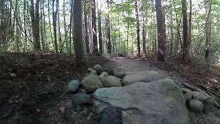 Dagmar North - Three Trails