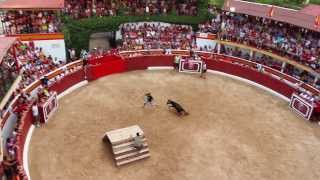 Vaquillas - Bullfight with young bulls  Camping Torre La Sal'2