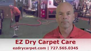 Tampa Fl carpet cleaning.