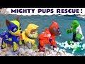 Paw Patrol Mighty Pups help Batman and Superman using their Superpowers TT4U