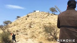 Best pheasant hunting .. hunting in pakistan ... Double barrel shot
