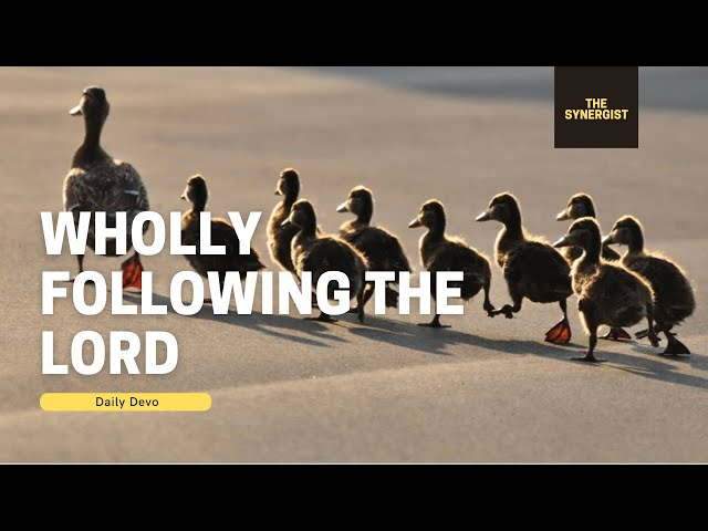 Daily Devo 2 (Wholly Following the Lord)