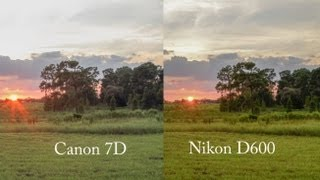 Nikon D600 Review Part 4 - Dynamic Range Testing...WOW!