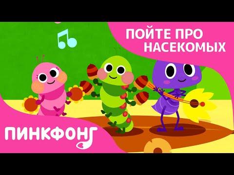 Жизнь насекомых   Песни про насекомых   Пинкфонг песни для детей