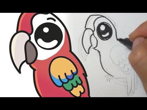 Cómo Dibujar Una Guacamaya Kawaii