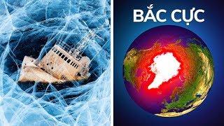 Tại sao không ai có thể sống sót ở Bắc Cực