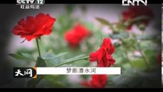 天网 《天网》 20130819 梦断澧水河
