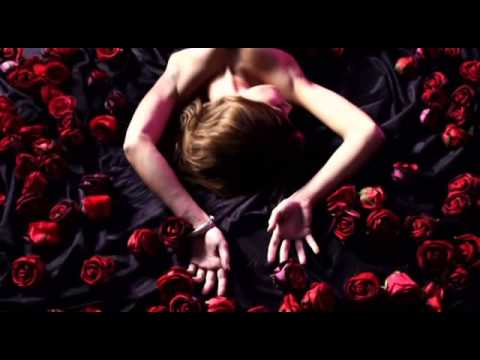 Bachelor Intro Trailer 2012 / 2013 Remake