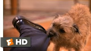 There's Something About Mary (3/5) Movie CLIP - Dog Fight (1998) HD