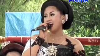 Download Video KORBAN JANJI TERUS (LITA) CAMPURSARI PRIMA WIJAYA MP3 3GP MP4