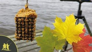 Рыбалка на фидер осенью.  1 серия.  Как прикармливать точку