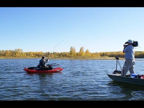 Trout Fishing - Boatman & Backswimmer Tactics   Alberta