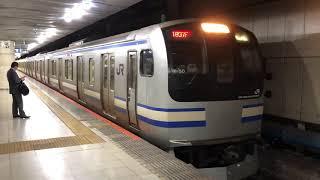 E217系クラY-50編成+クラY-131編成東京発車