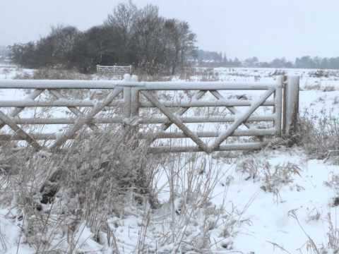 More snowy pictures of Gosberton