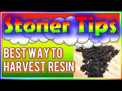 STONER TIPS #22: BEST WAYS TO GET RESIN!