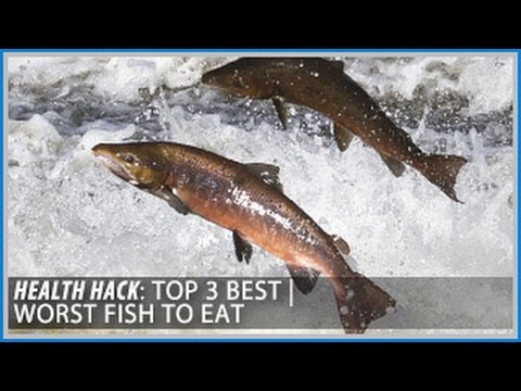 Top 3 best worst fish to eat health hacks thomas for What is the best fish to eat