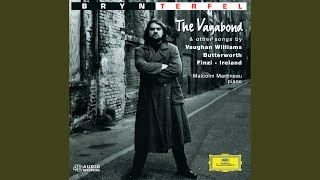 Vaughan Williams: Songs Of Travel - 8. Bright Is The Ring Of Words