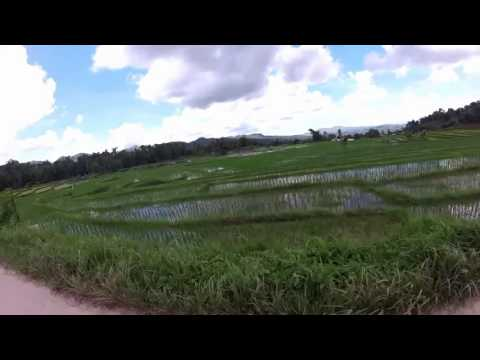 Can-umantad Falls & Rice Terraces, Candijay, Bohol