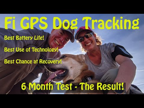 Fi GPS Dog Tracker - Live Test After 6 Months of Testing Across the USA!